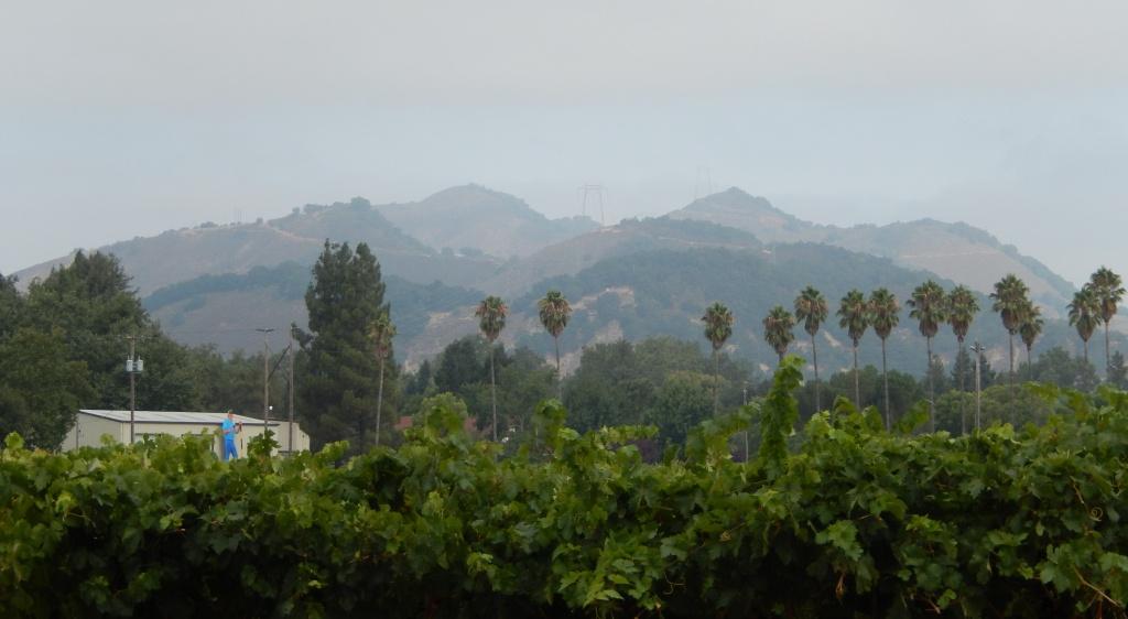 Twin Peaks (Santa Clara County, California) - Wikipedia - Twin Peaks California Map