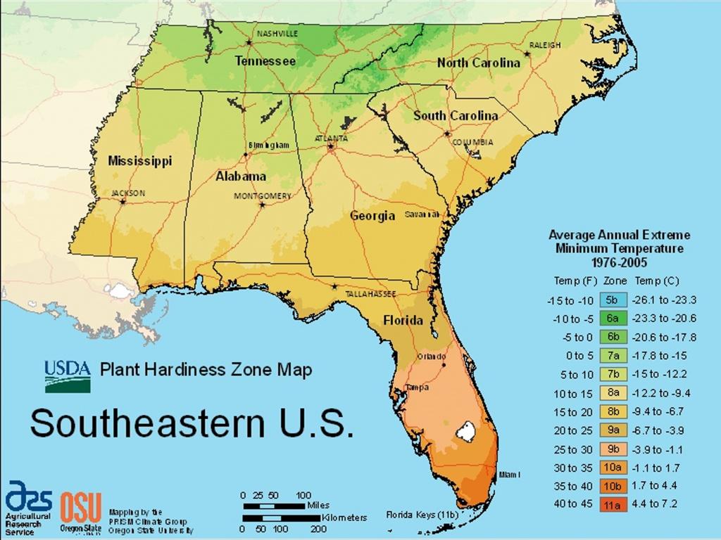 Usda Plant Hardiness Zone Mapsregion - Plant Zone Map Florida