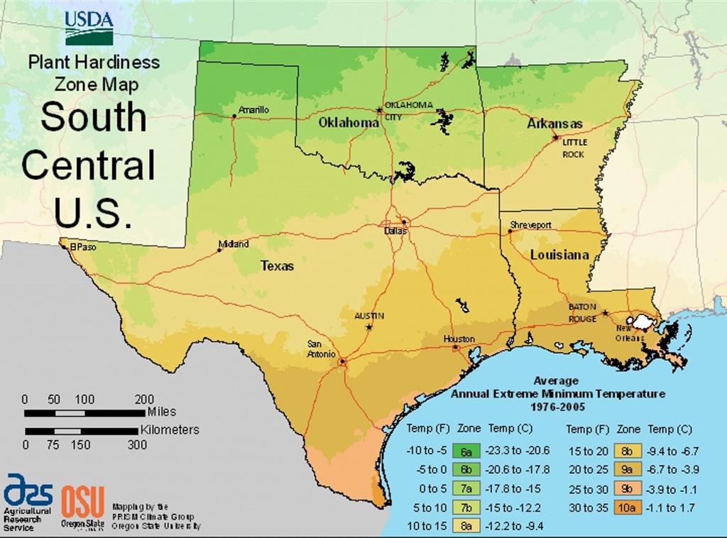 Usda Plant Hardiness Zone Mapsregion - Texas Garden Zone Map
