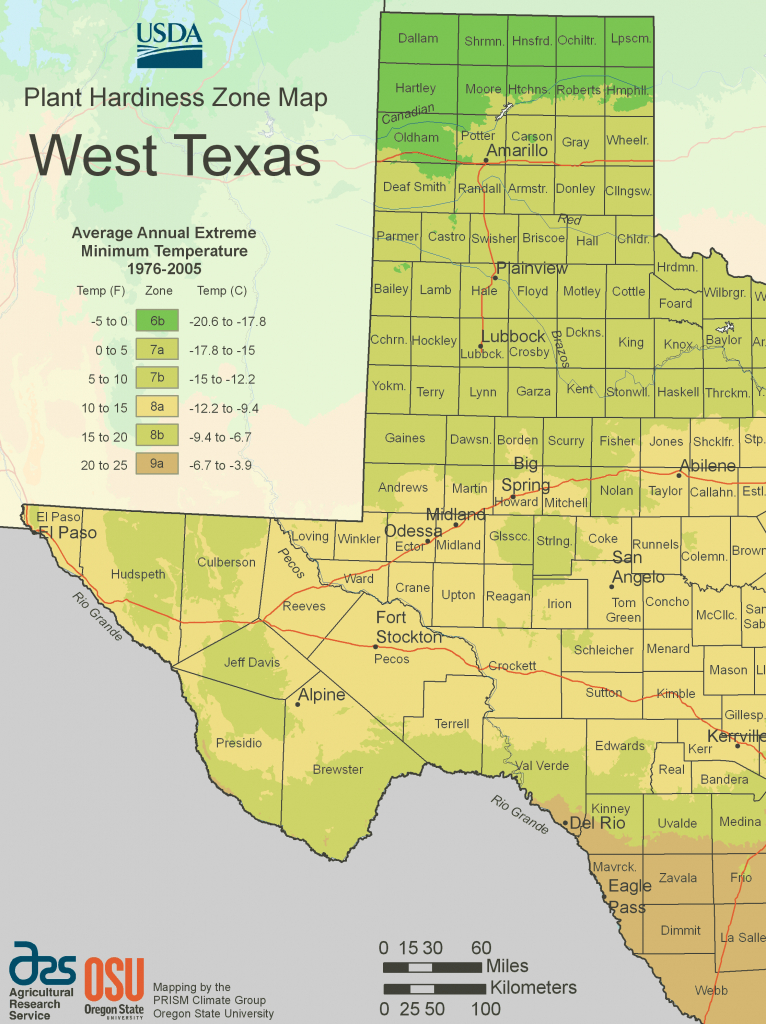 West Texas Plant Hardiness Zone Map • Mapsof - Texas Growing Zone Map