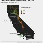 Why California's Wildfires Are So Destructive, In 5 Charts   Fire Map California 2018