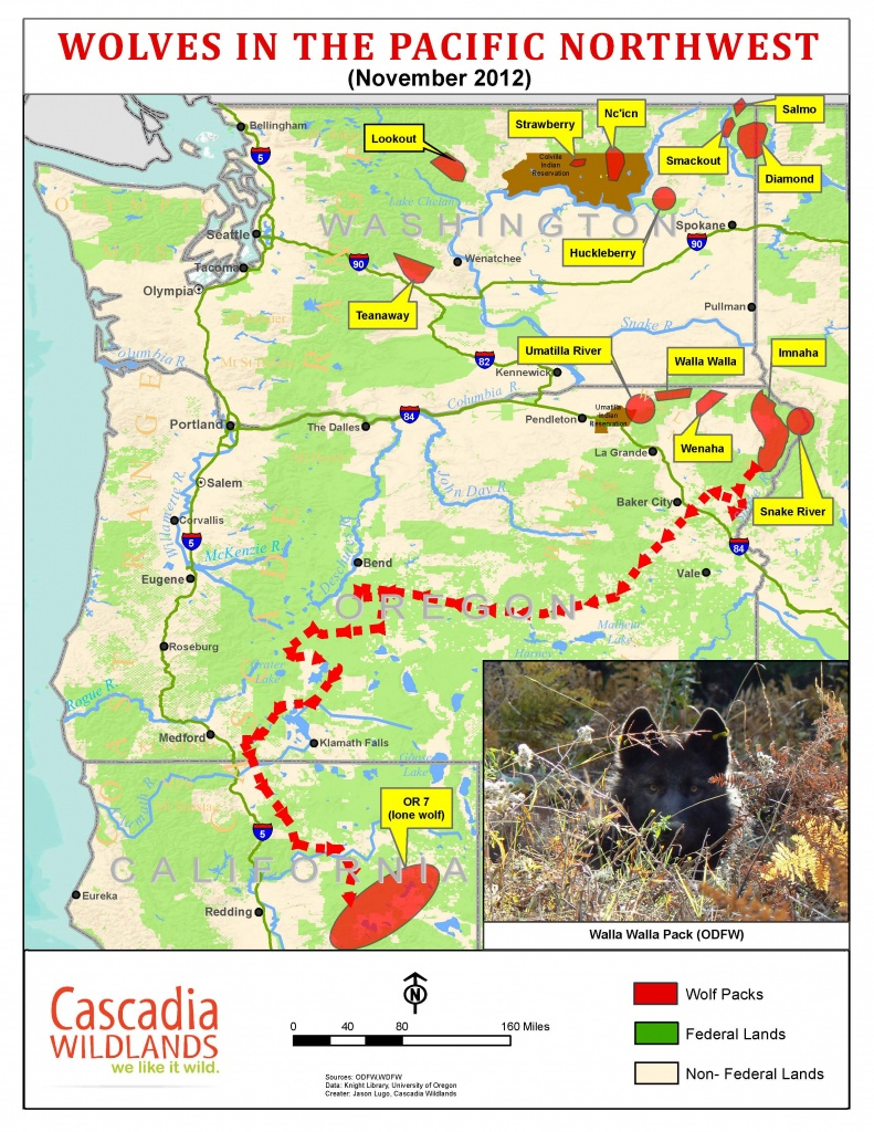 Wolves Return To Oregon And California: But Protecting Them May - Wolves In California Map